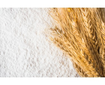 Farine: valori nutrizionali e curiosità